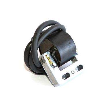 X30125955 X30 Selettra Coil (for key ignition)