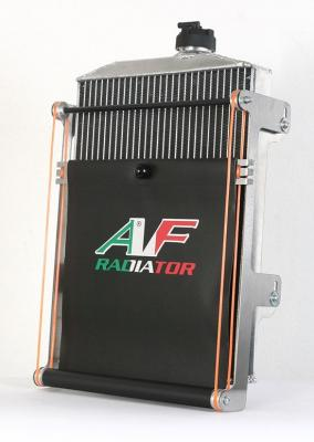 "AF ""GOLD"" Aluminum Radiator - 17x9.5"""